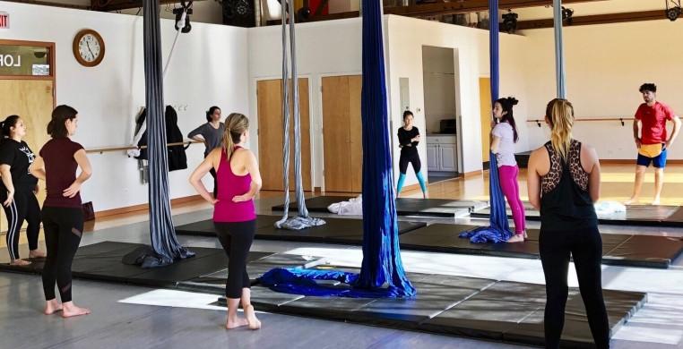 Aerial Dance Chicago - Virtual Classes