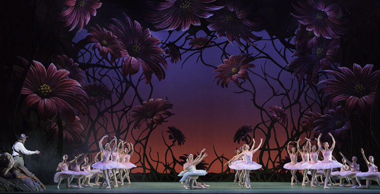 The Royal Ballet in Don Quixote by ROH/JOHAN PERSSON 2013.