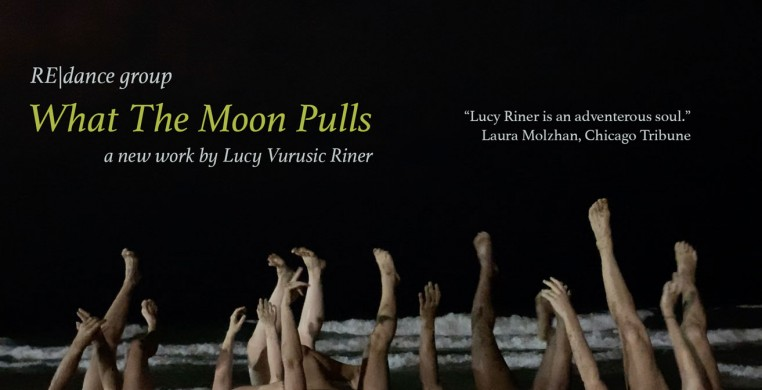 What The Moon Pulls by Lucy Vurusic Riner