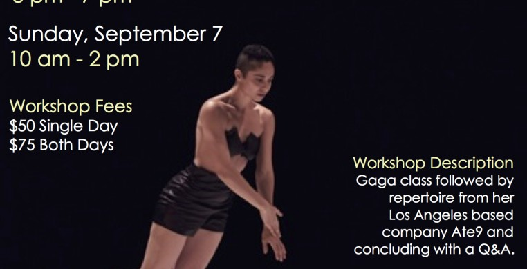 VDC Workshop with Danielle Agami