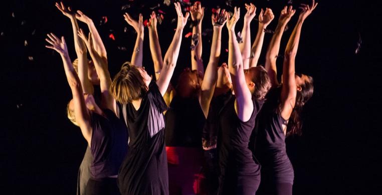 Harvest Chicago Contemporary Dance Festival 2019 Call for Artists