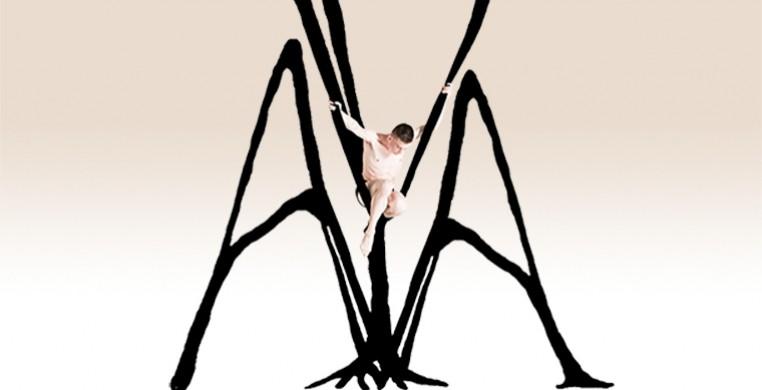 AYA An Aerial Ballet