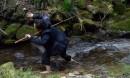SpinOff:: Ayako Kato, blue fish III - reveal -