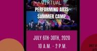 PPI Virtual Summer Camp