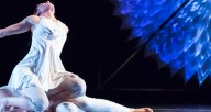 Hedwig Dances