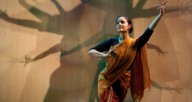"Natya Dance Theatre: ""The Flowering Tree"""