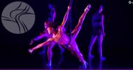 Harvest Chicago Contemporary Dance Festival