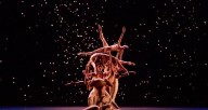 "The Joffrey Ballet in ""Fool's Paradise"" (photo credit: Cheryl Mann)"
