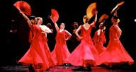 Flamenco Chicago Showcase: Ruth Page Center for the Arts
